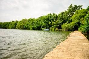 Jezero Koggala