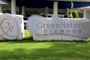 Green Nature Diamond
