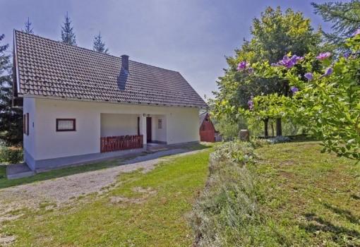 Prázdninový dům Jelka (Poljanak)