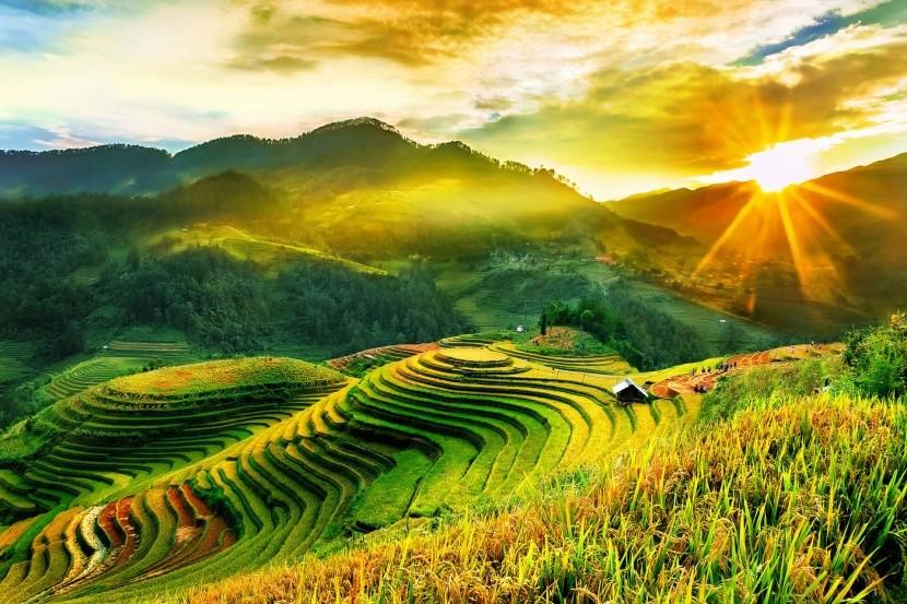 Rýžové terasy v Mu Cang Chai