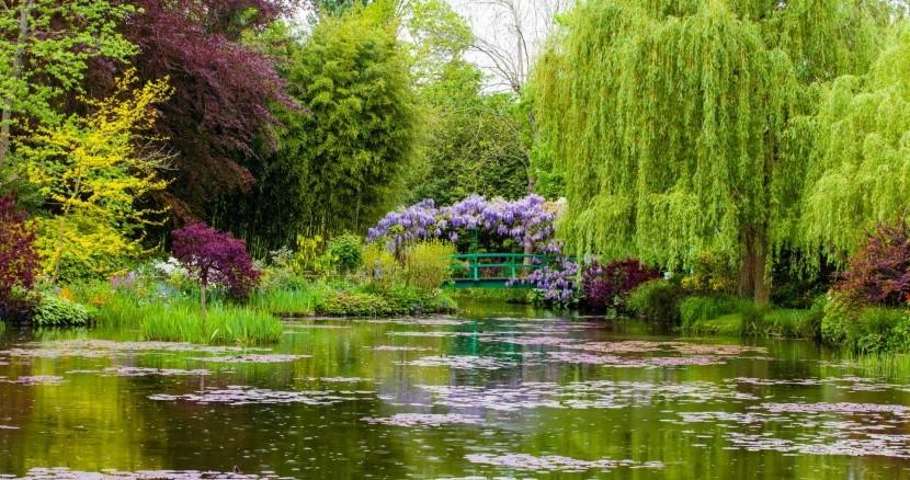 Monetovy zahrady