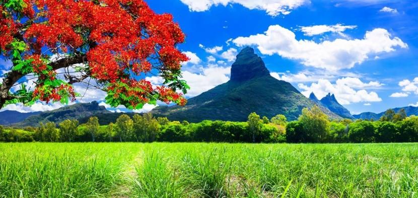 Příroda ostrova Mauricius