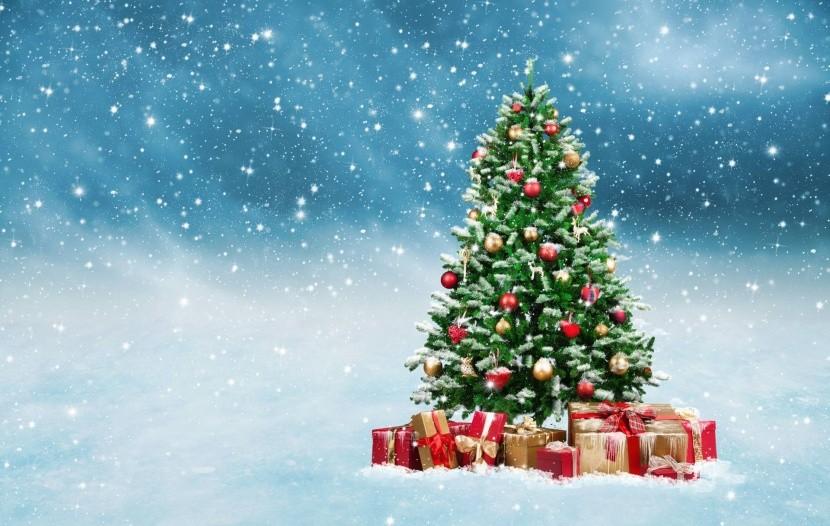 Ozdobený stromek je pro nás symbolem Vánoc