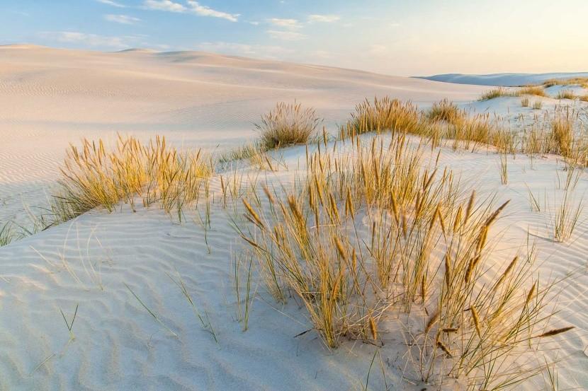 Písečné duny, Polsko
