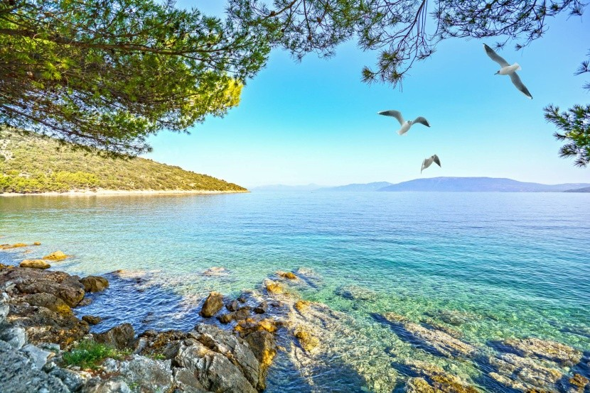 Ostrov Cres, Chorvatsko