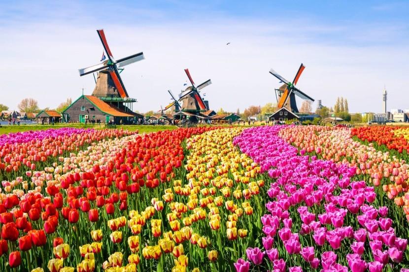Holandský skanzen Zaanse Schans