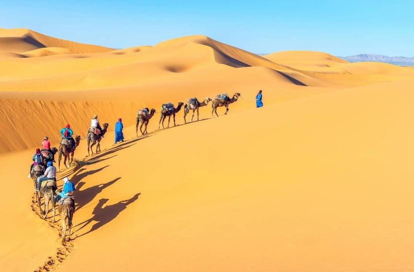 Velbloudí karavana na Sahaře