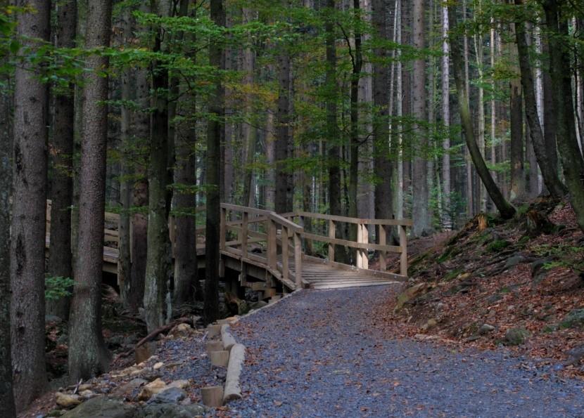 Cesta k Čertovu jezeru