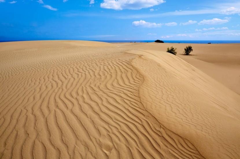 Písečné duny v Corraleju
