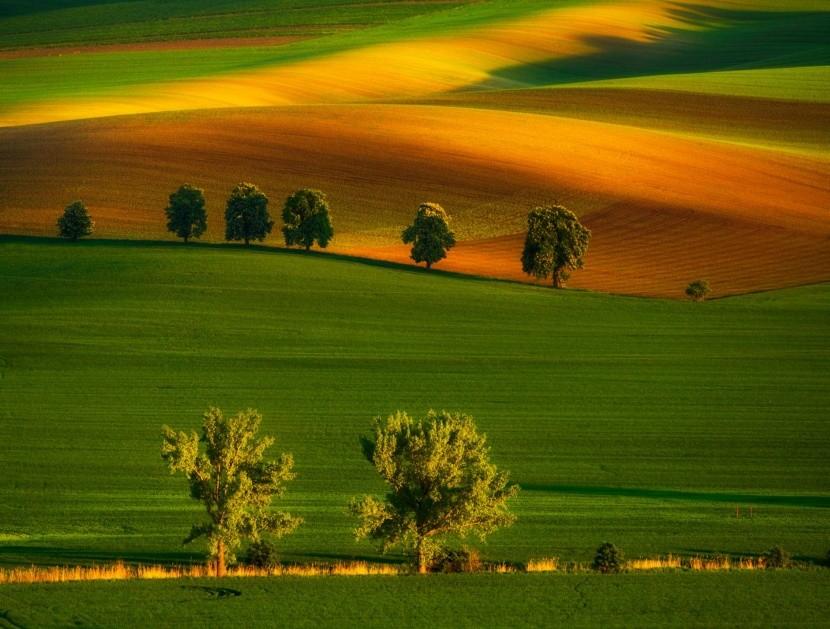 Krajina kolem jihomoravského Kyjova