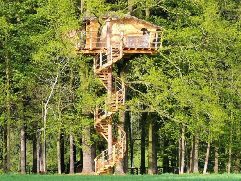 Ubytování na stromě