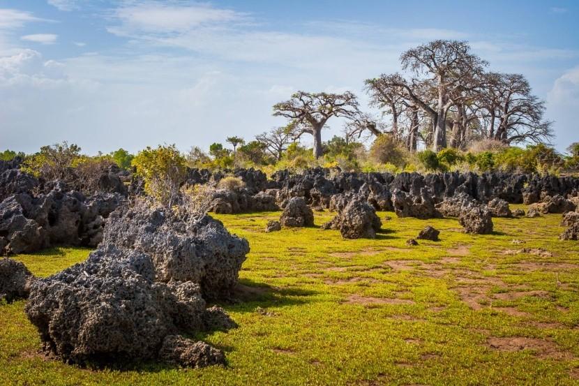 Ostrov Wasini a korálová zahrada