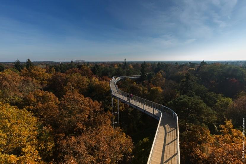 Stezka korunami stromů Beelitz