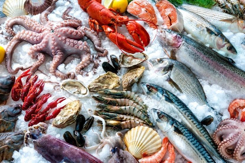 Rybí trh v Sydney