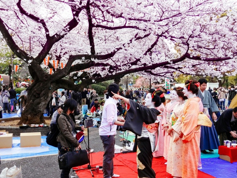 Hanami v parku Ueno