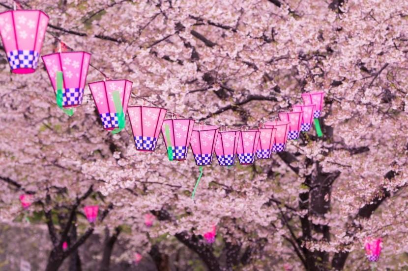 Lampionová výzdoba v Japonsku