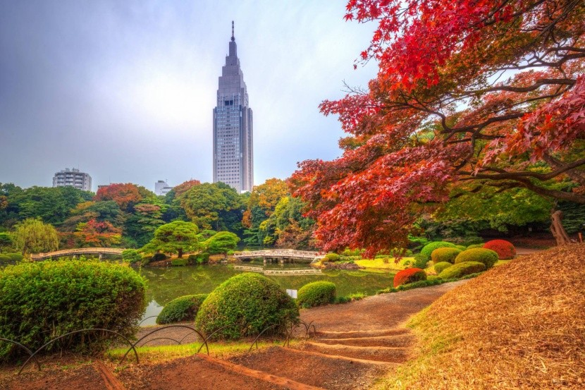 Národní zahrada Shinjuku Gyoen
