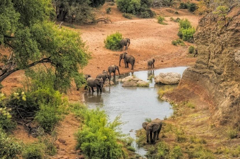 Krugerův národní park v Jihoafrické republice