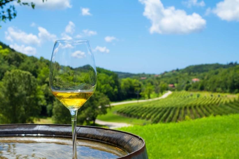 Chorvatské víno
