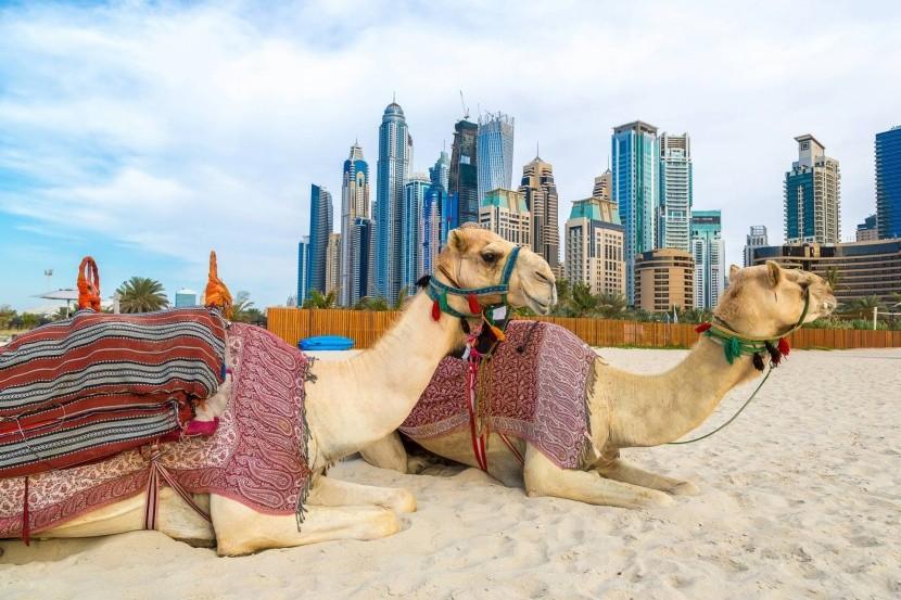 Letní dovolená v Emirátech
