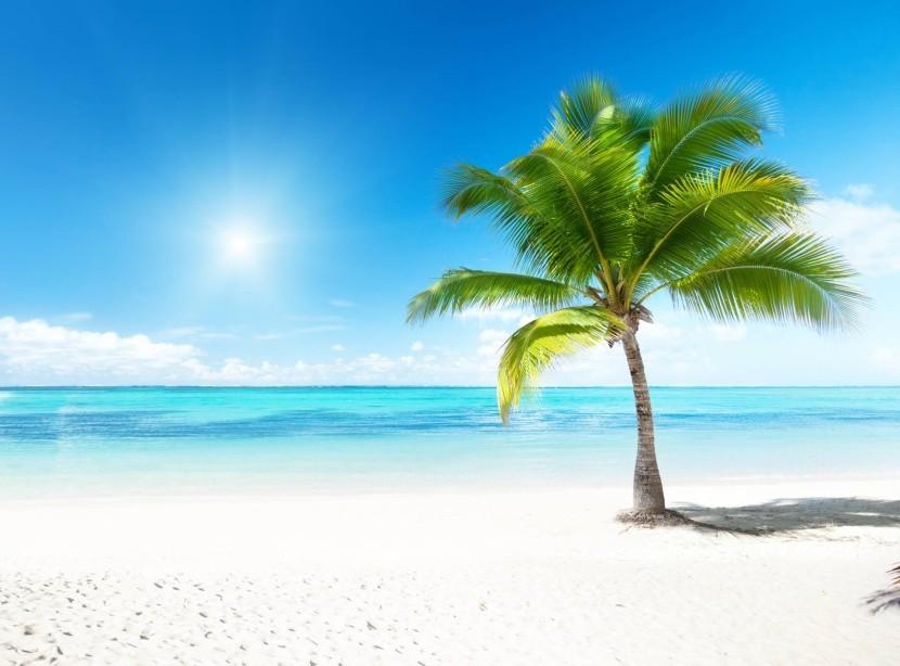 Exotická dovolená v létě