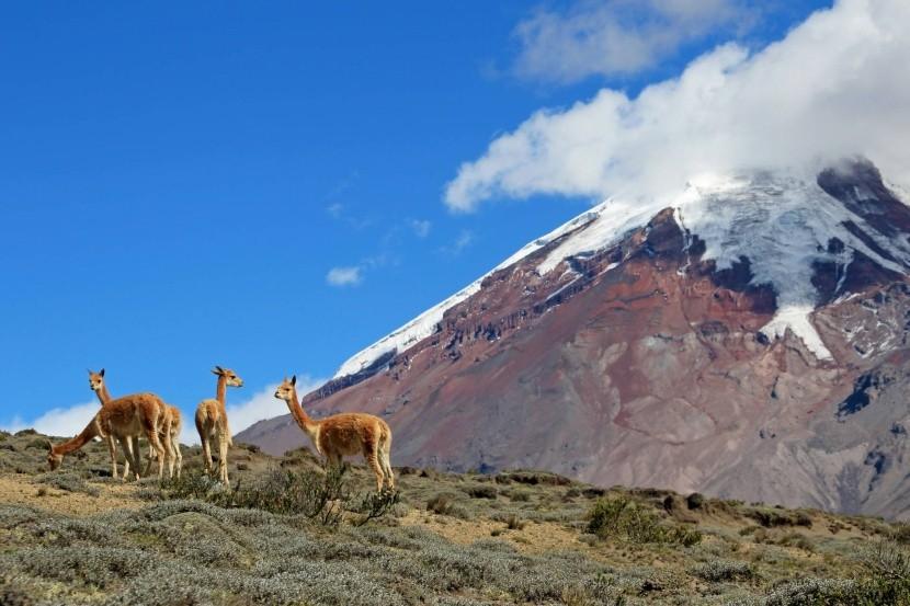 Ekvádorská příroda
