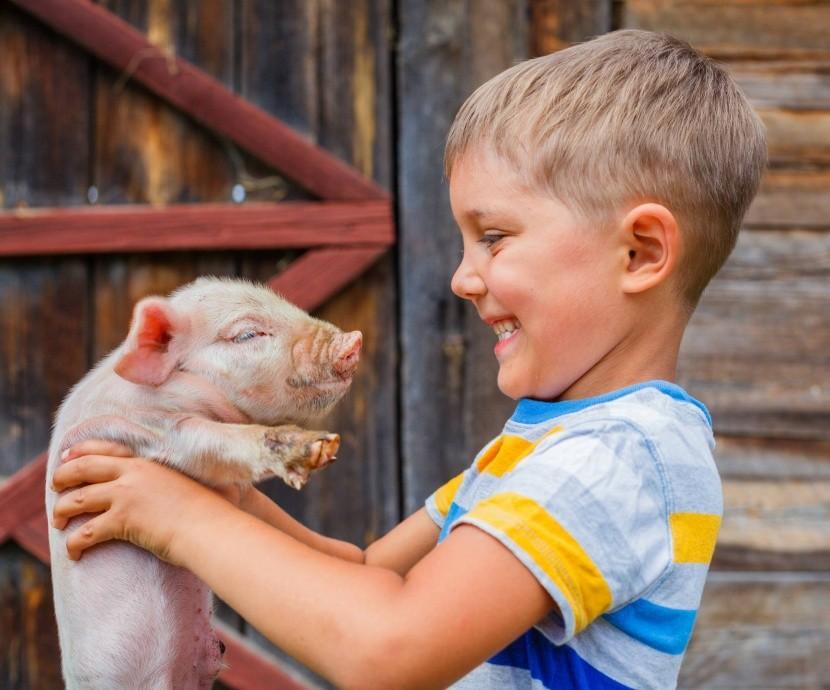 Děti agroturistiku milují