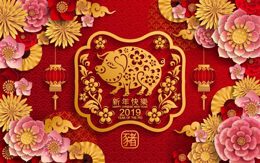 2019 - čínský rok prasátka