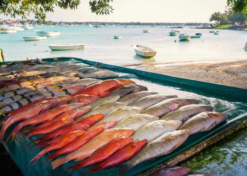 Rybí trh na Mauriciu