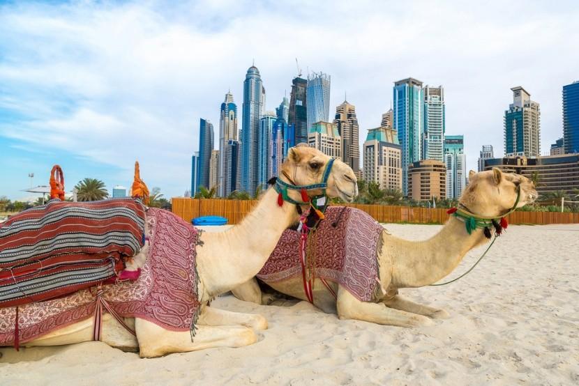 Dovolená v arabských emirátech