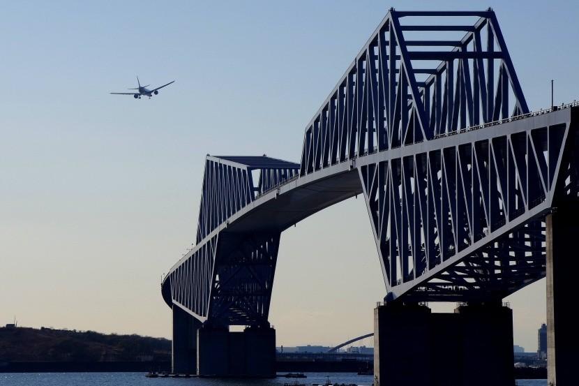 Letadla poháněná algae - utopie?