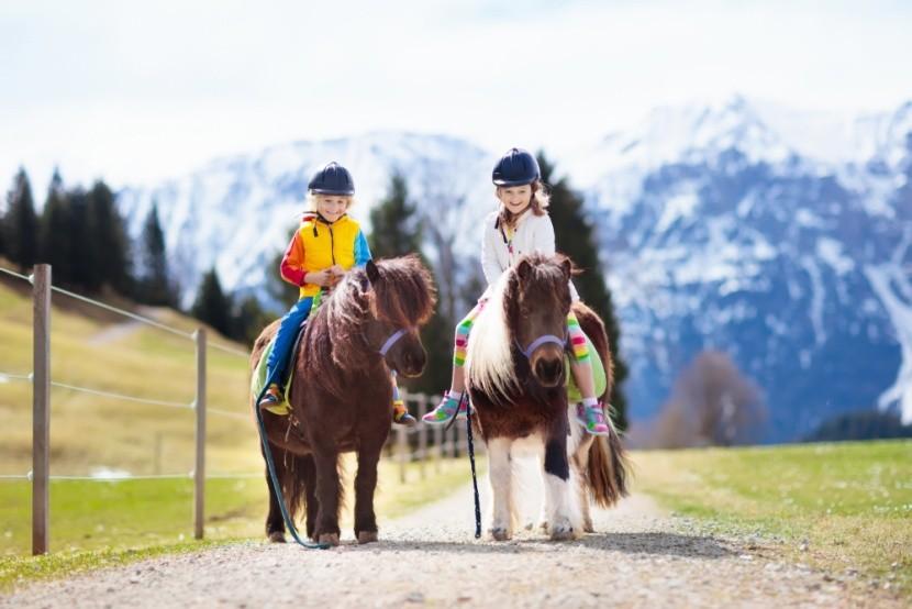 Rakousko je zemí zaslíbenou agroturistice