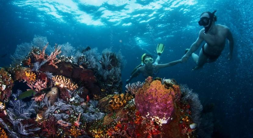 Potápění v Austrálii