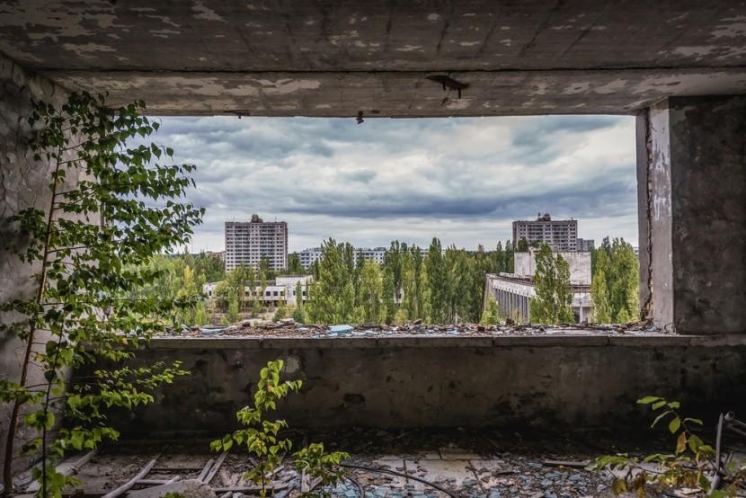 V Černobylu se příroda vrací zpět