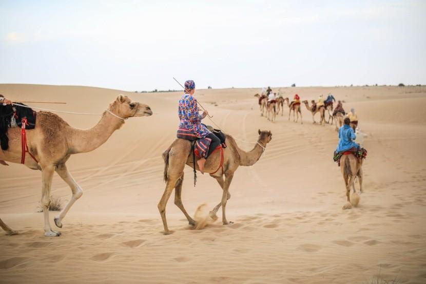S beduíny a velbloudy v egyptské poušti