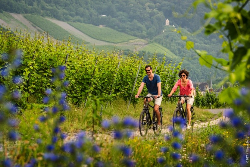 Cykloturistika mezi vinicemi v Porýní