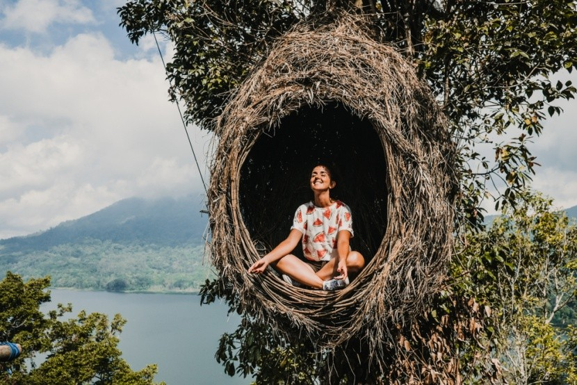 Meditace v ptačím hnízdě