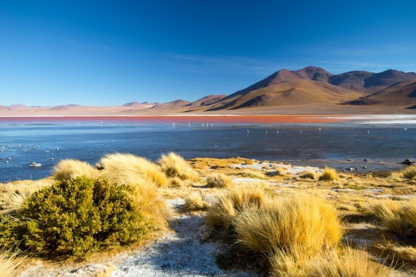 Krvavě rudé jezero Laguna Colorada