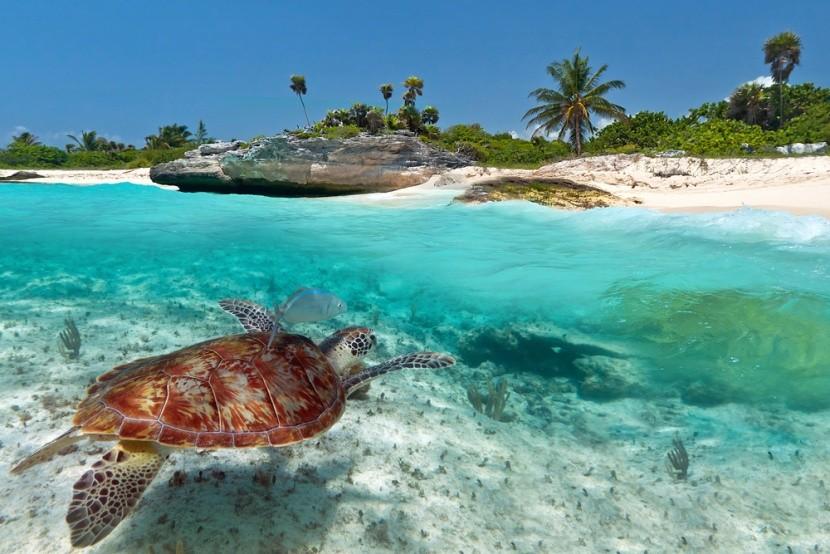 Exotická dovolená v Mexiku