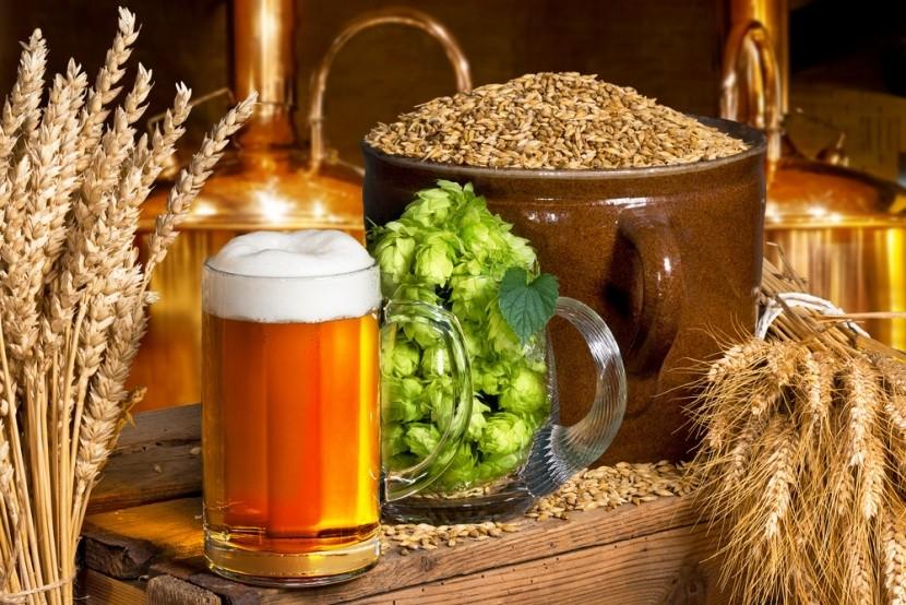 Dovolená po stopách pivovarů