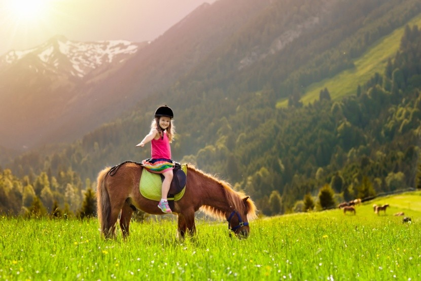Agroturistika v Rakousku