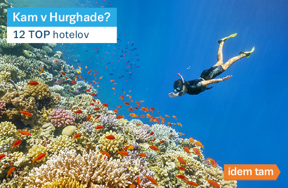 12 TOP Hurghada